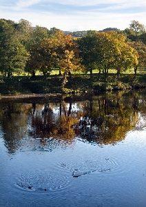 autumn reflections Lancaster