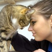 PORTRAIT GALLERY 1Animal Care volunteer Kim Lancaster from Heysham shares a little tlc with resident 'Rufus'