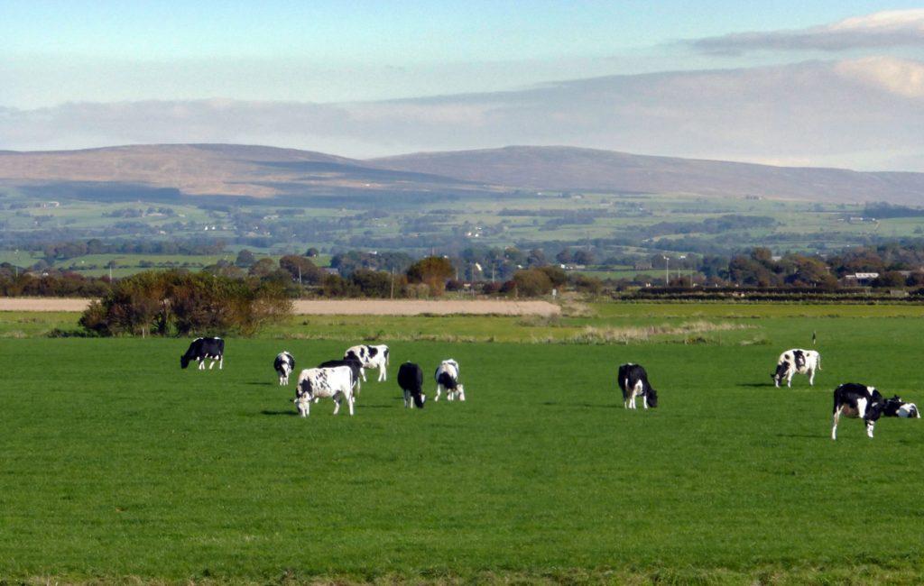 Lancashire scenery, landscape photography