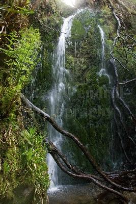Dhoon Glen waterfalls.