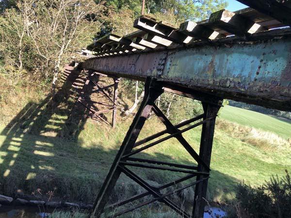 Old Mill Burn, Newbie